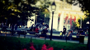 gatheredinpark